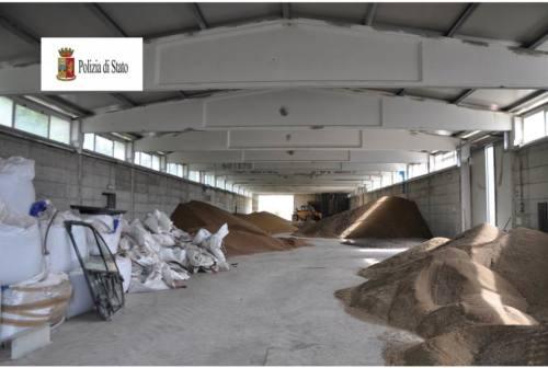 Urbino, rubarono sementi da un'azienda agricola: condannati