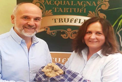 Acqualagna sempre più patria del tartufo: rinvenuto bianco da 500 grammi