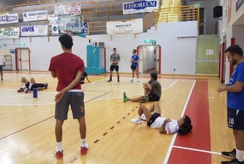 Nef Osimo, coach Baldoni: «Qui per Masciarelli, mi metto in gioco anche io»