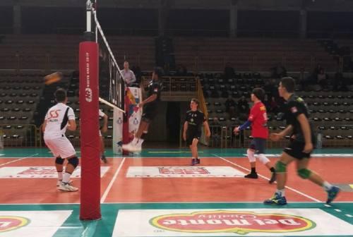 Volley, Paoloni Macerata: si intensificano le sedute della truppa di Giganti
