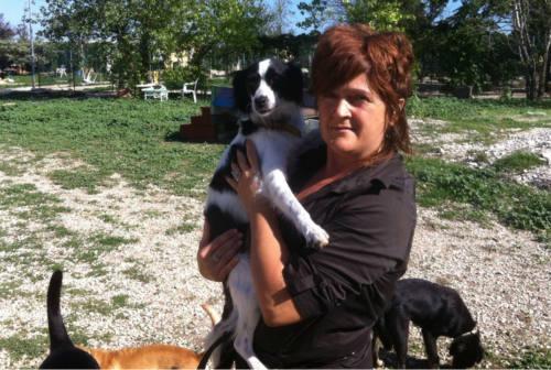 Fano piange Simona Maroccini: per 20 anni responsabile del canile