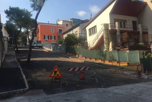 Pini abbattuti a Falconara: via Gobetti a confronto prima e dopo