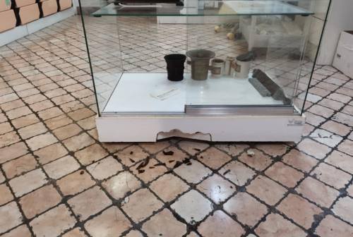 Macerata, aggressione alla farmacia Filipponi: «Abbiamo avuto paura». Arrestato un 35enne