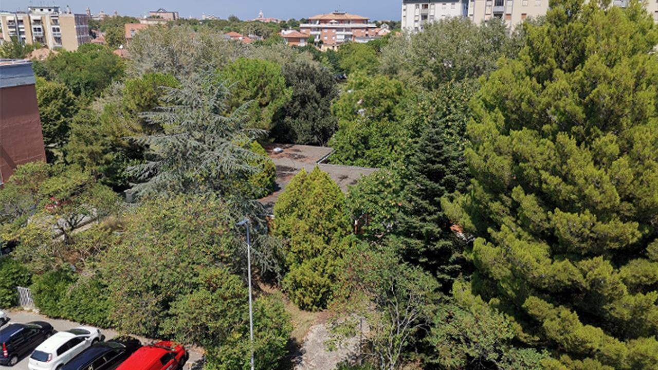 """L'ex asilo in via delle Mimose a Senigallia immerso nel verde. Foto del comitato """"Salviamo gli alberi e la scuola di via delle Mimose"""""""