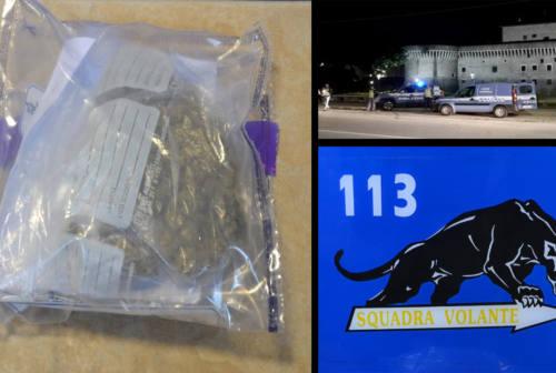 Droga, sequestrata marijuana nei pressi delle scuole
