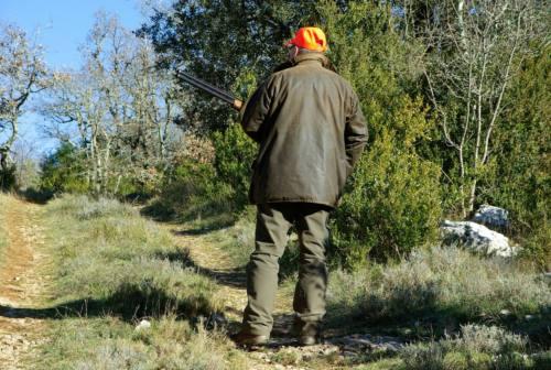 Caccia alle specie protette nelle Marche: è stop dal Governo. Animalisti pronti a denunciare la Regione