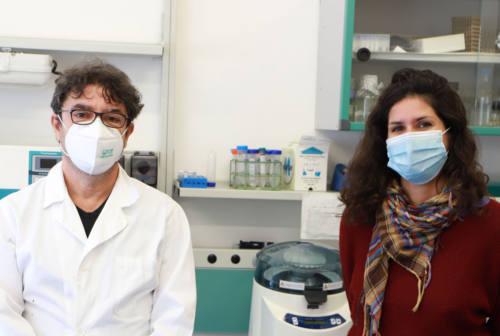 All'Università di Camerino una ricercatrice di Creta per un progetto sul controllo della malaria