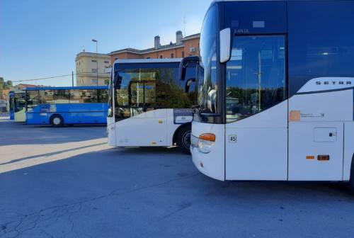 Jesi, l'imprenditore Crognaletti: «Stazione dei bus via da Porta Valle? Meglio di no»