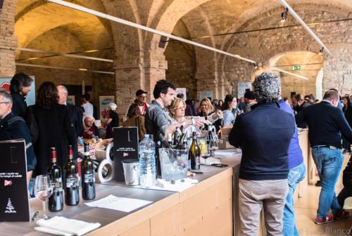 """Ancona, è tempo di """"Tipicità in blu!"""", edizione 2020. Ecco tutti gli appuntamenti"""