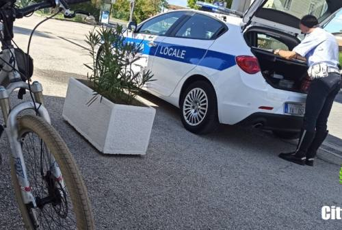 Osimo, ciclista ubriaco lungo la statale: multato