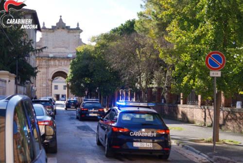 Rubano bottiglie di alcolici per 500 euro: tre denunce a Senigallia
