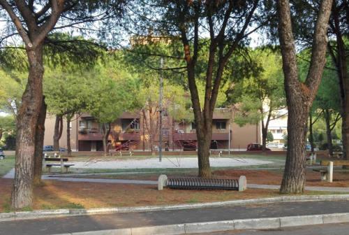 """""""Parchi puliti"""" a Senigallia, un progetto per il verde e la città. Ecco come partecipare"""