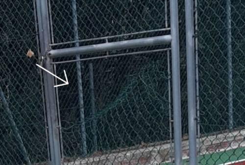 Agugliano, vandali squarciano la rete del campetto