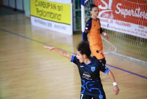 Futsal, Città di Falconara: rinviata per Covid la sfida esterna con il Città di Capena