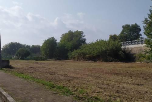 Falconara: al via la realizzazione del bosco urbano a Castelferretti