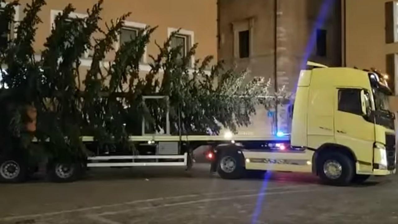 L'albero di Natale in piazza a Fano