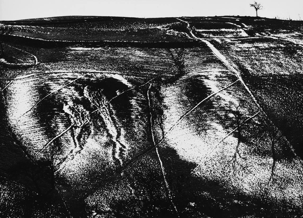 Mario Giacomelli, Metamorfosi della terra, anni '60, Courtesy Archivi Mario Giacomelli © Rita e Simone Giacomelli