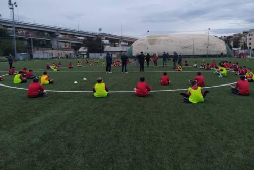 Calcio giovanile, Nuova Folgore Ancona: provarci per i piccoli, la voglia di allenamento anche nelle difficoltà