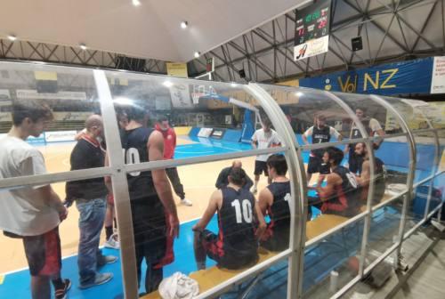 Basket, Goldengas Senigallia parte forte: c'è la visita alla Gesteco Cividale