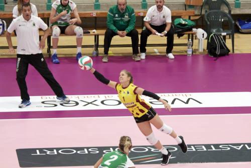 Volley, la Megabox Vallefoglia all'assalto di Montecchio Maggiore