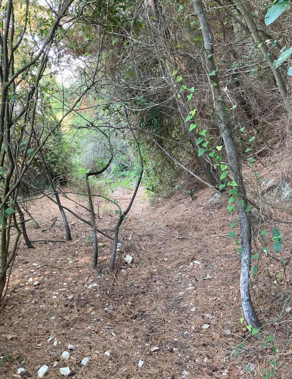 Portonovo, il vecchio sentiero