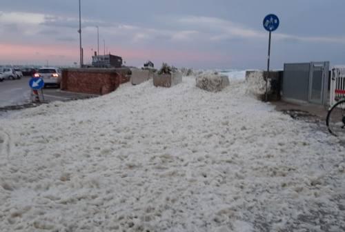 Pesaro, la schiuma di mare attira la curiosità dei cittadini
