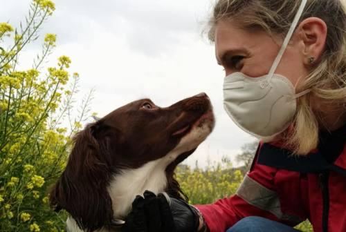 «Il padrone in quarantena? Mai abbandonare i cani, a loro #cipensiamonoi!»: parola di Sguinzagliati