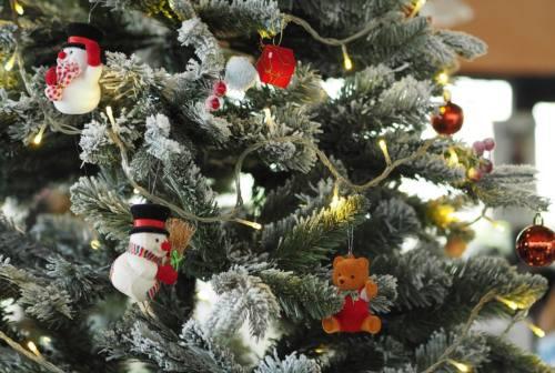 Dpcm Natale, piovono critiche da Regione Marche e Coldiretti