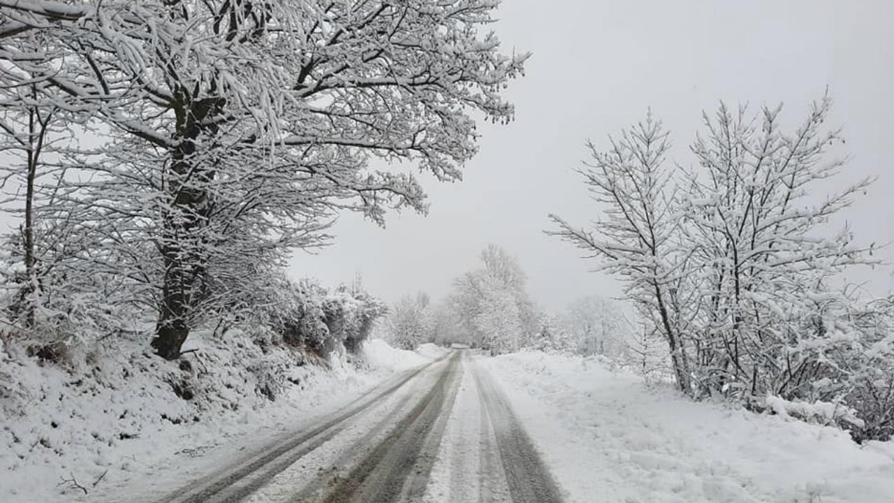 Neve in Carpegna