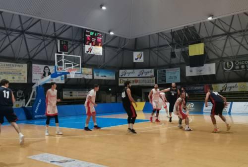 Basket Serie B, è tornata la vera Goldengas Senigallia: il derby con Ancona si tinge di biancorosso