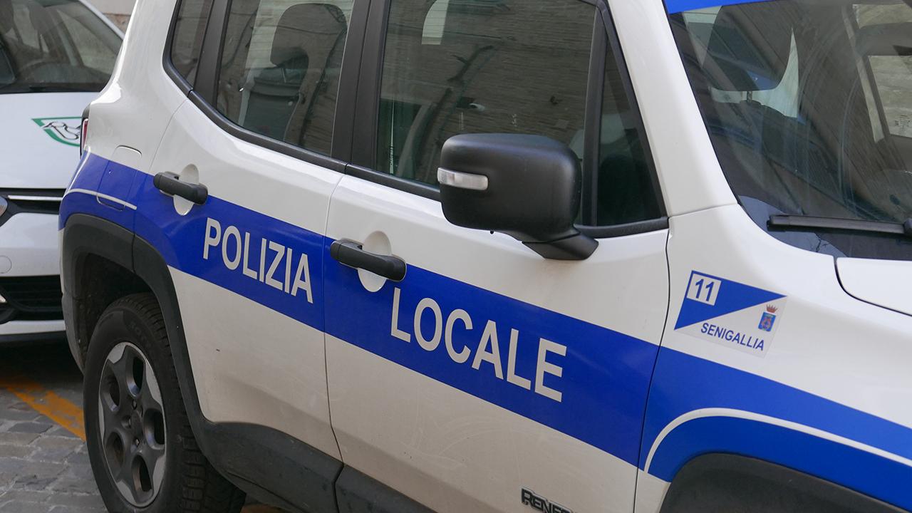 Vigili, urbani, polizia municipale, polizia locale di Senigallia