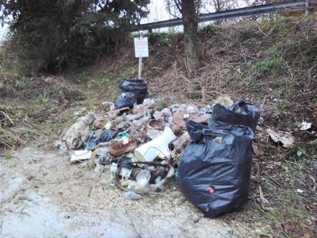 Fiume Misa, volontari puliscono un tratto da rifiuti e vegetazione in eccesso