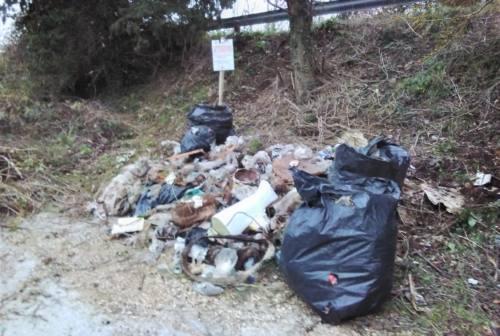 Fiume Misa, volontari puliscono un tratto di alveo da rifiuti e vegetazione in eccesso