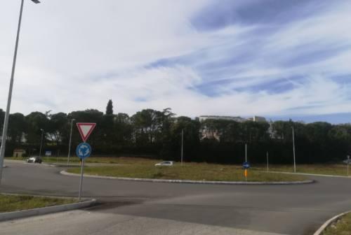 Jesi, lavori in partenza alla rotatoria fra via Ancona e viale Don Minzoni