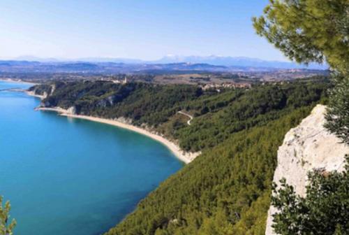 Il Pungitopo di Ancona spegne 40 candeline in difesa dell'ambiente