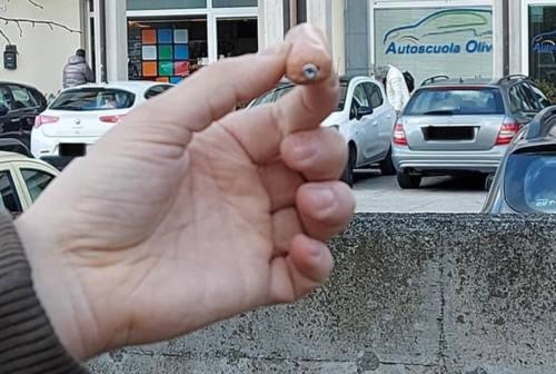Bocconi killer per i cani, nuovo allarme ad Ancona