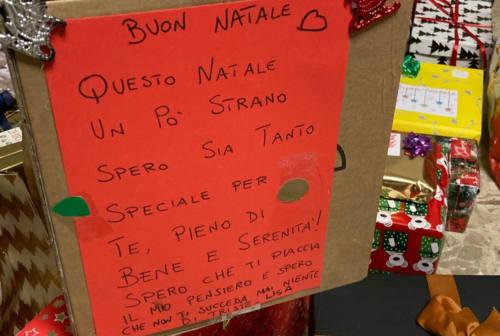 Fano, ladri senza cuore cercano di trafugare i pacchi dono per la famiglie più deboli: blitz a vuoto