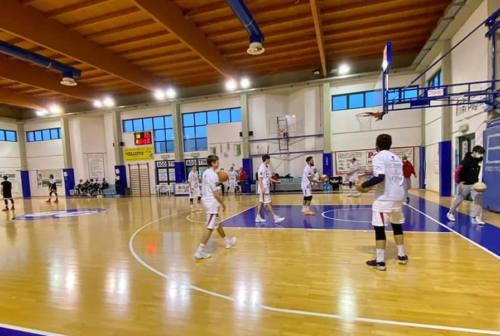 Basket, la Goldengas fa il colpaccio: grande vittoria sul San Vendemiano