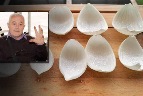Le cipolle di Lillini annunciano il ritorno delle quattro stagioni