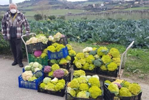 Ancona, Orto Sociale: dai detenuti del Barcaglione un raccolto di oltre 200 cassette di frutta e verdura
