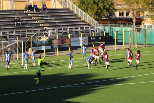 Eccellenza, la Vigor Senigallia ribadisce e rilancia: «Noi speriamo di tornare a giocare»
