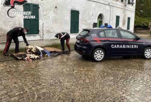 Morro d'Alba, i carabinieri salvano un uomo dall'incendio del suo appartamento
