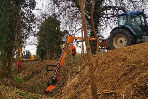 Procedono spediti i lavori di manutenzione sul fiume Misa a Senigallia