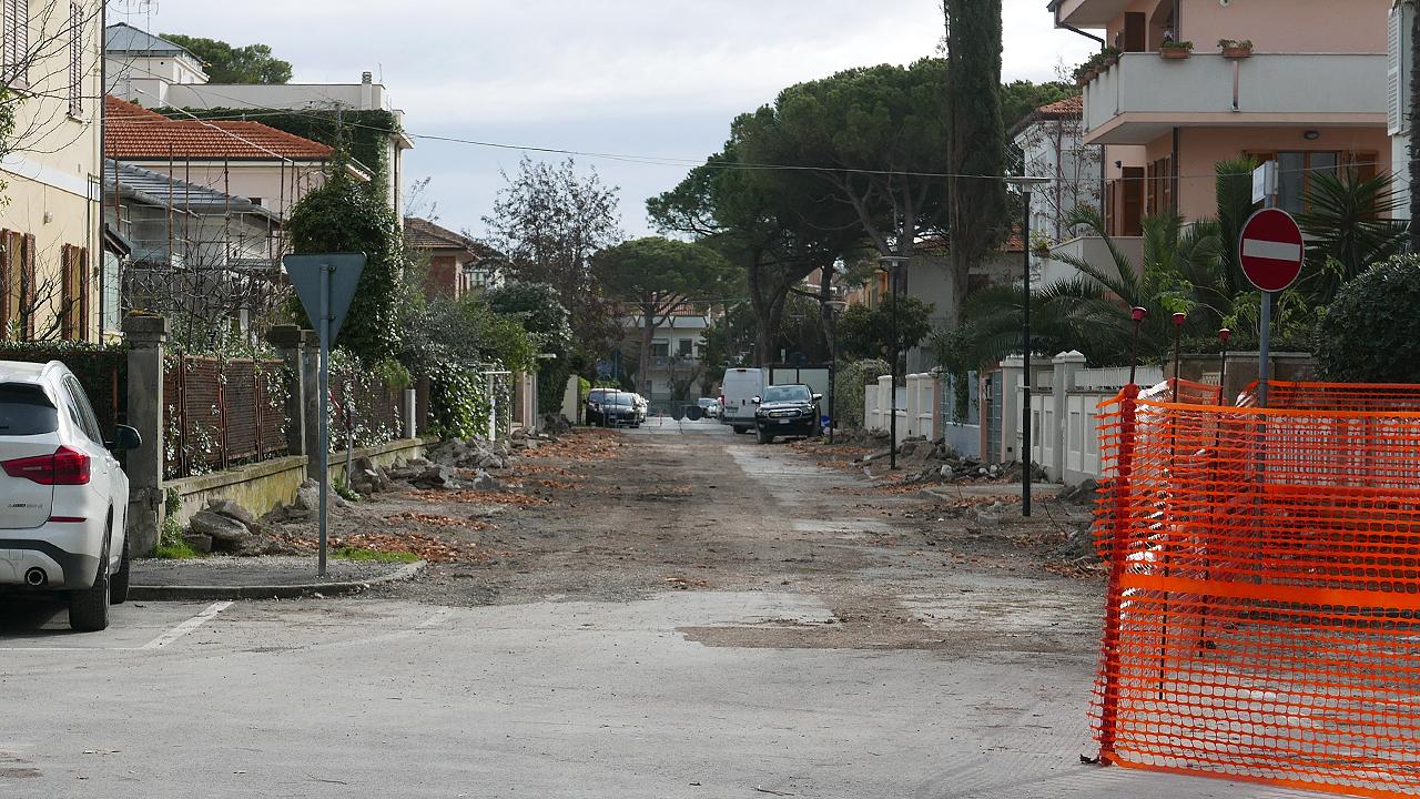 Il gruppo Società e Ambiente interviene sull'intervento per abbattere gli alberi in via don Minzoni a Senigallia