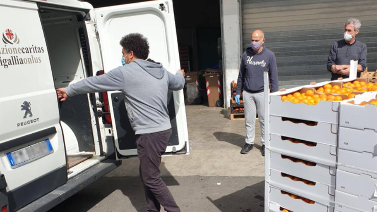 La raccolta di aiuti alimentari da parte dell'associazione Stracomunitari di Senigallia per le famiglie in difficoltà