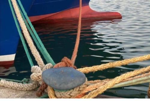 """San Benedetto, piccoli pescatori """"salvati"""" dallo sfratto al porto"""
