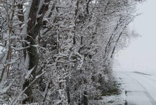 Jesi sotto la neve, città imbiancata (Fotogallery)