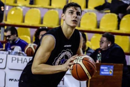 Basket, il Campetto Ancona annuncia l'innesto di Denis Alibegovic