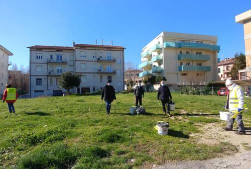 Montemarciano, volontari ambientalisti del gruppo Spiaggia pulita in azione in via dei Tigli