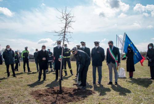 Fano, un bosco per ricordare le vittime del Covid. Seri: «Un gesto che significa speranza» – FOTO